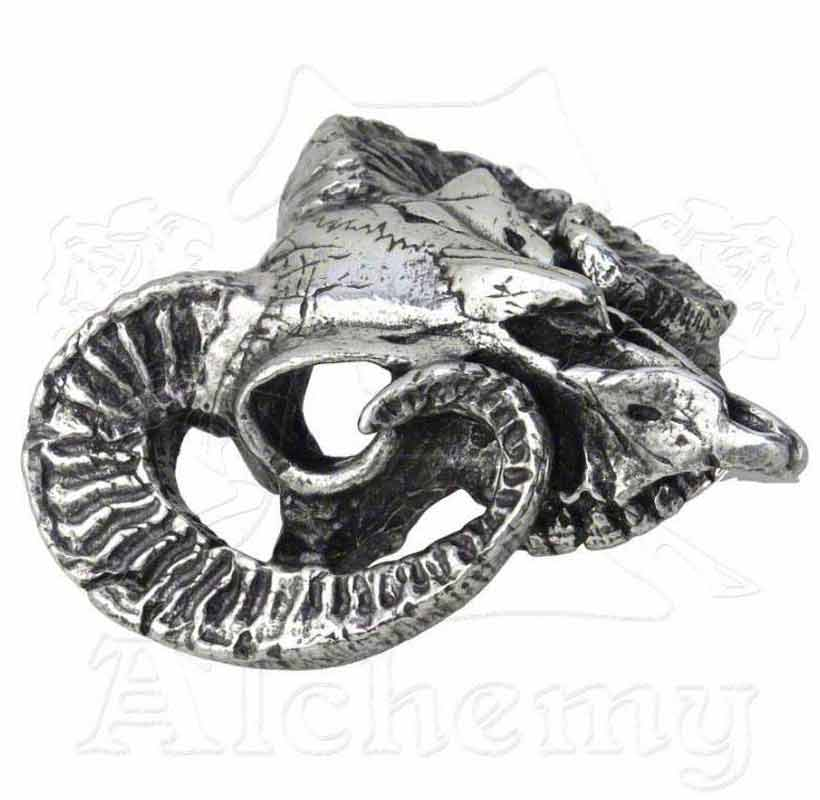 Metal-Wear Letter Of Marque Belt Buckle Alchemy Gothic